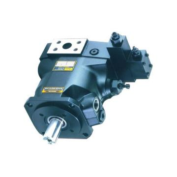 Pompe à pied double piston + manomètre – 270°