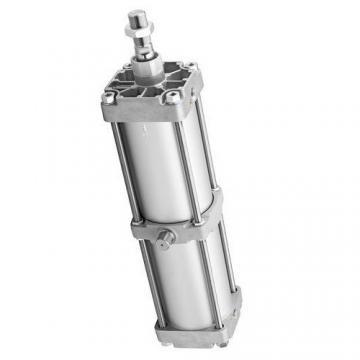 BOSCH vérin pneumatique double AIR CYLINDER C10A AP 100 X0080 KA  D100 L80