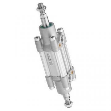 Bosch 0 822 122 002 Cylindre Compact Vérin Pneumatique