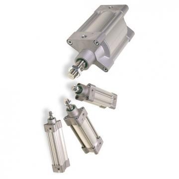 Schrader Bellows/PARKER Pneumatique Cylindre B25-7102B-80 Excédent Stock